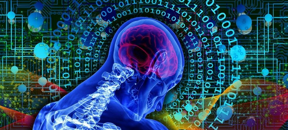 Creierul uman poate localiza SENZAȚIA atingerii chiar și dincolo de corp