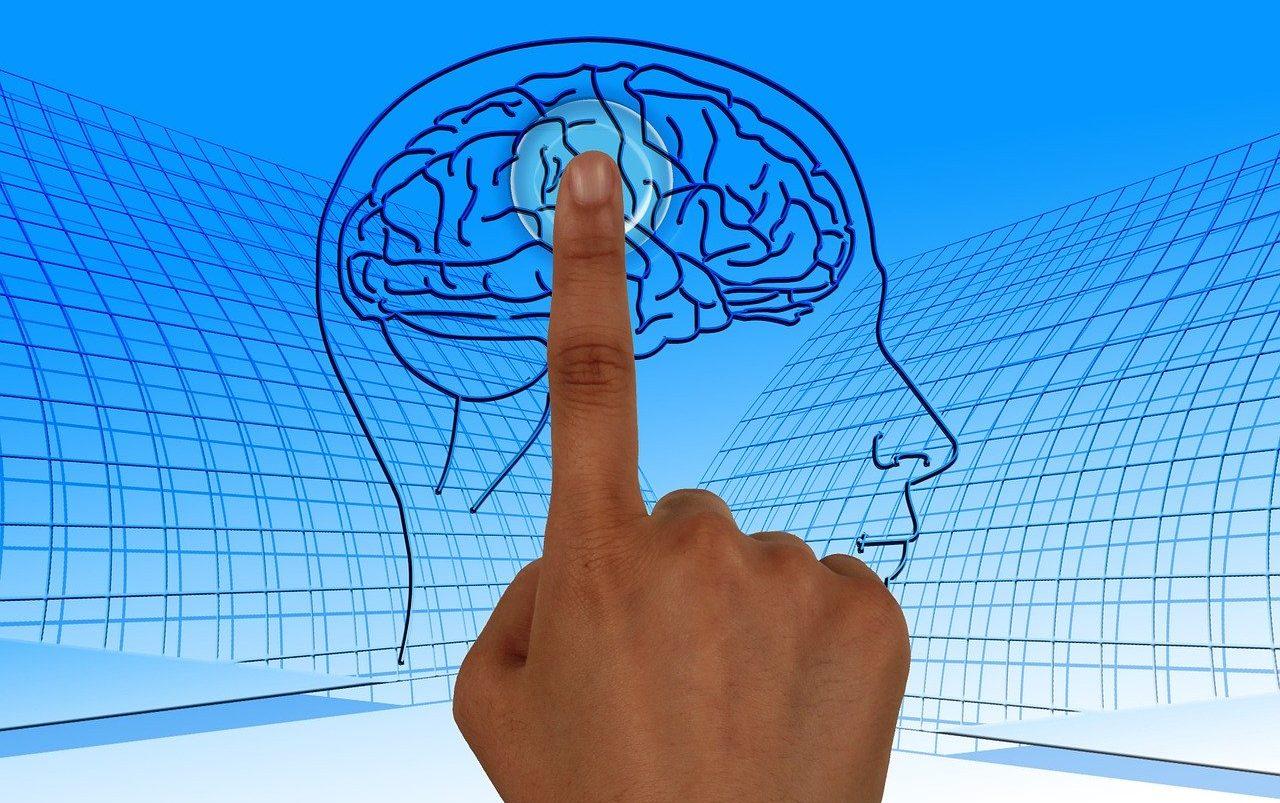 Propria atingere vs atingerea făcută de către ceilalți. Cum face creierul diferența?
